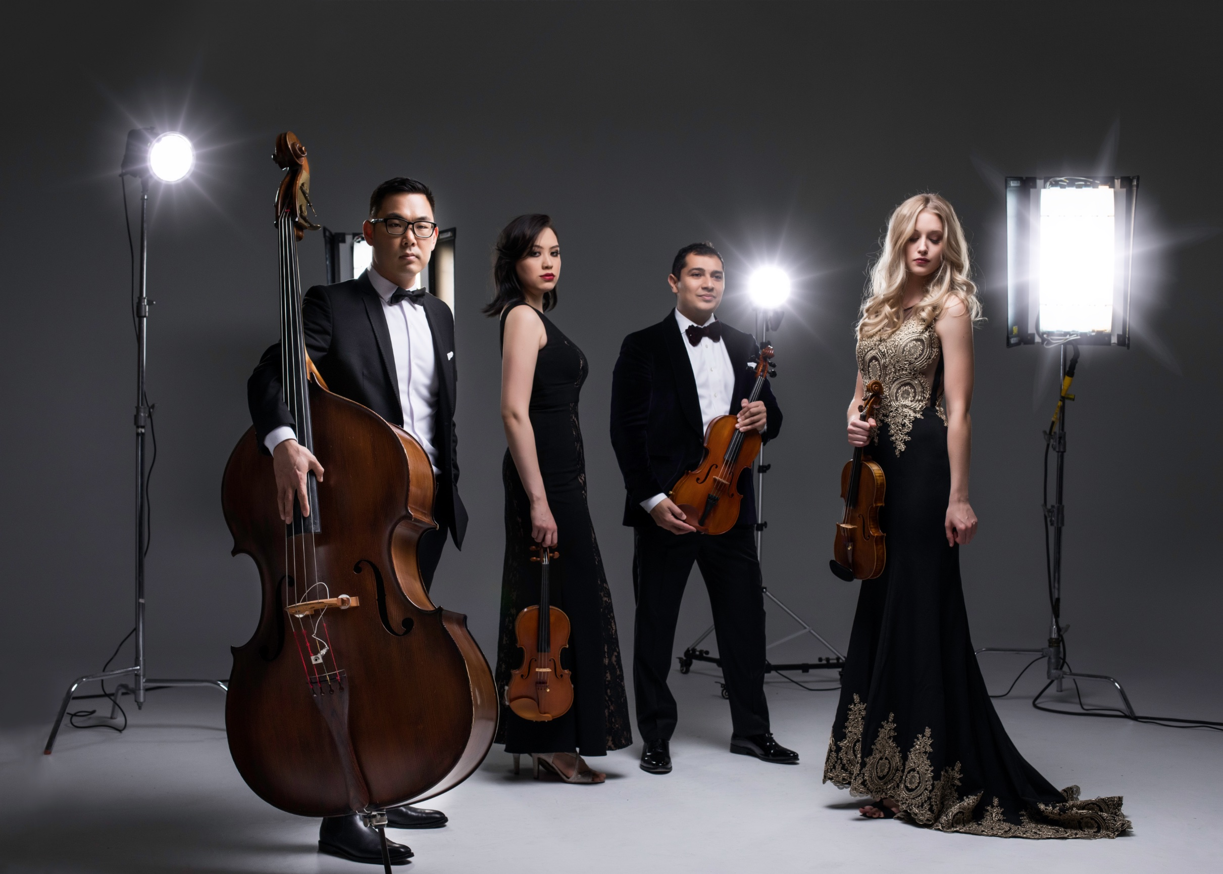 BIO - Dallas String Quartet